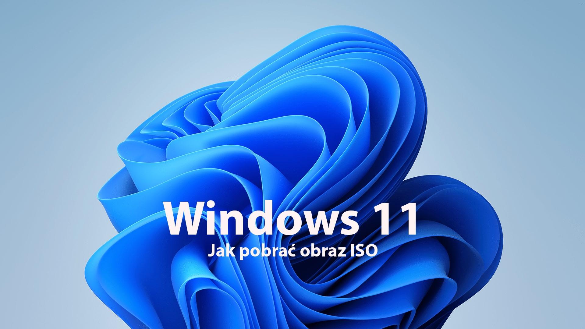 Jak pobrać obraz Windows 11 (ISO)